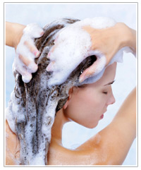 shampoo-tea-tree-oil